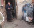 Kauza Měňany 15 týraných psů